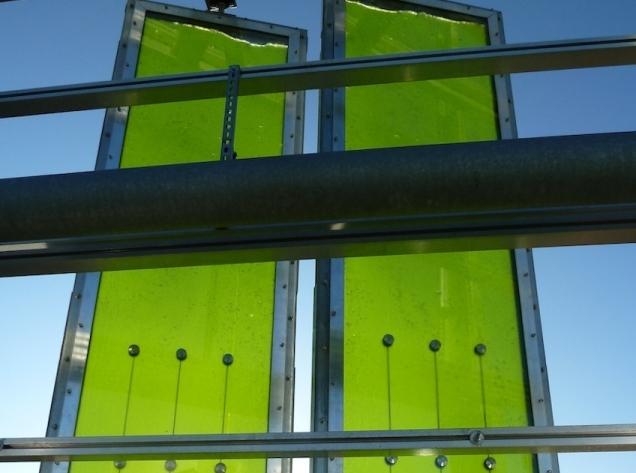 BIQ House_Pannelli alghe