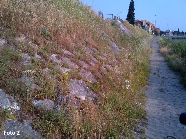 Argine Adige_02