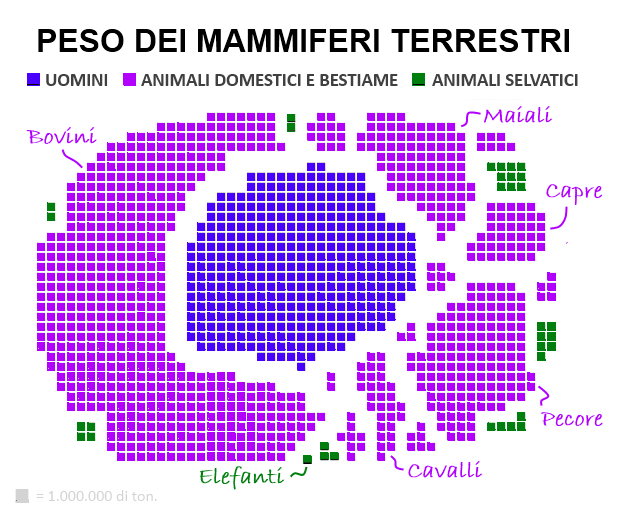 Il peso dei mammiferi terrestri