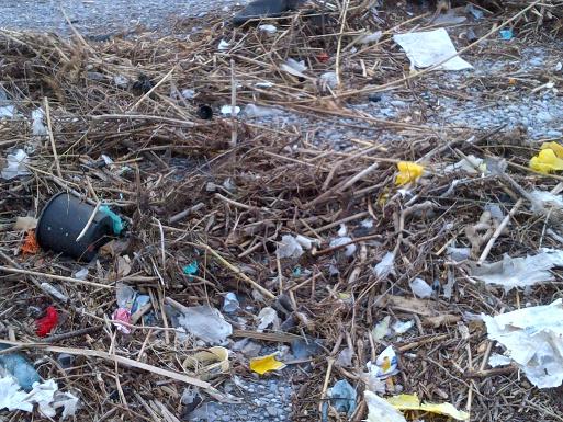 La maledizione dei rifiuti_02