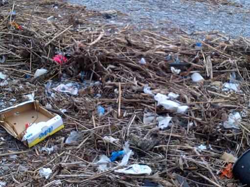 La maledizione dei rifiuti_03
