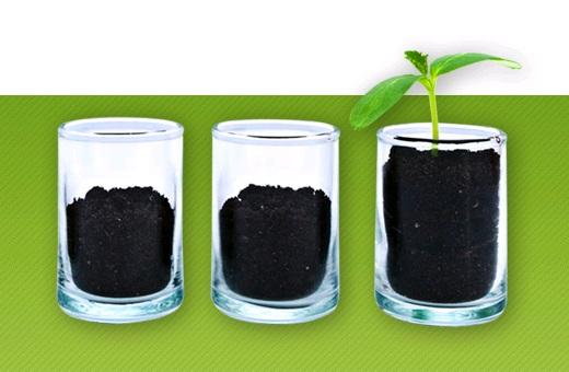 Bio Soil Expert