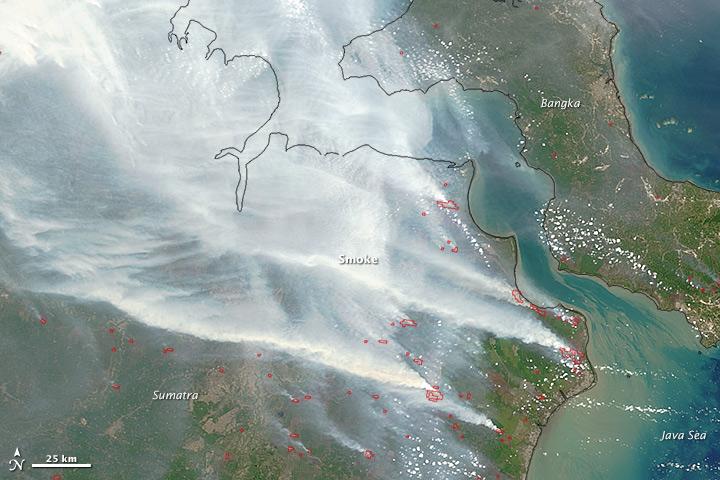 L'Indonesia brucia