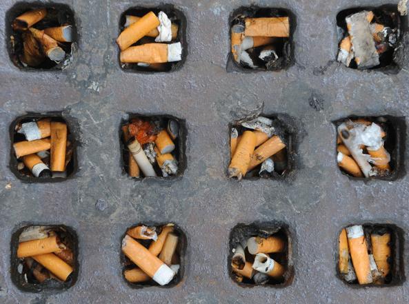 Cicche sigaretta