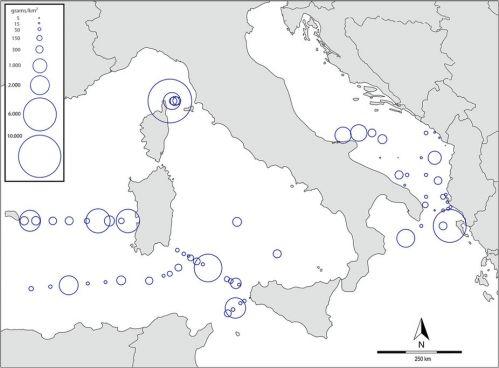 Mappa della concentrazione delle microplastiche del Mar Meditterraneo