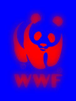 WWF: luci e le ombre del 2016
